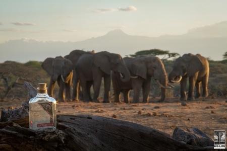 Elephant London Dry Gin von Elephant Gin