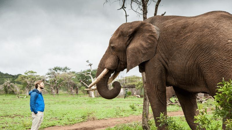 Robin Gerlach mit Elefant von Elephant Gin