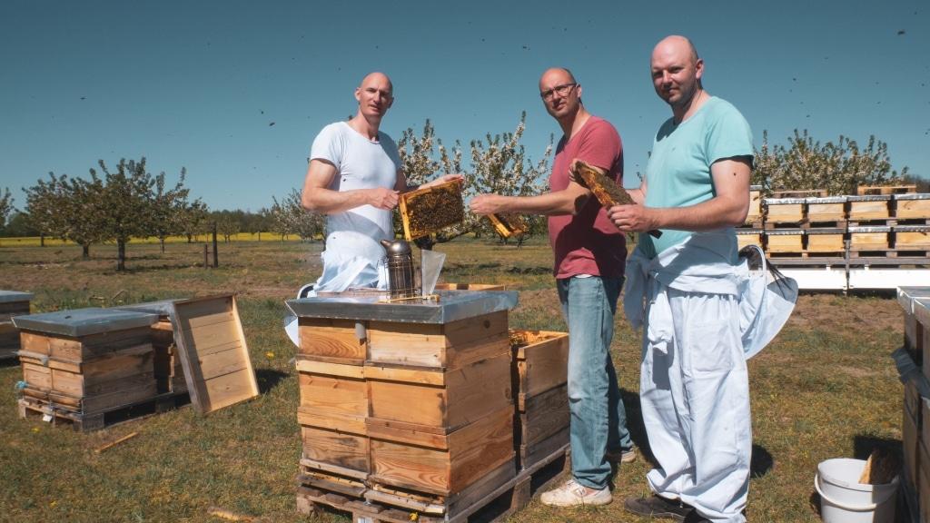 Die Brüder Ueberschär von Honigprinz