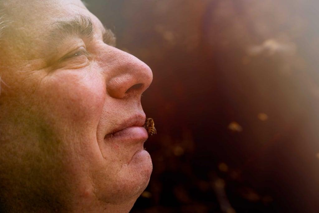 Kristian Kaiser im Profil mit einer Biene auf den Lippen
