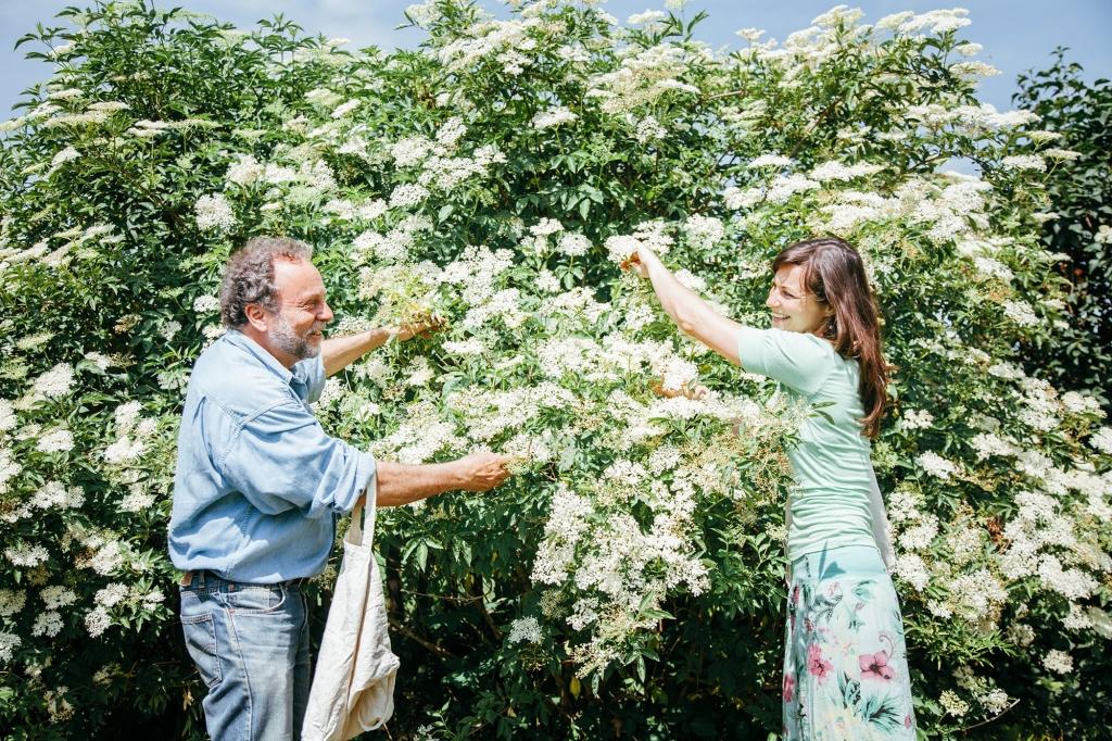 Malena Medam beim Pflücken der Holunderblüten