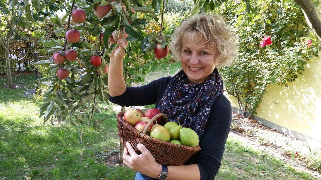 Sabine Pusch von Kyffhäuserobst pflückt Äpfel