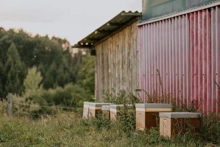 Bienenwachstücher-Set Mississippi