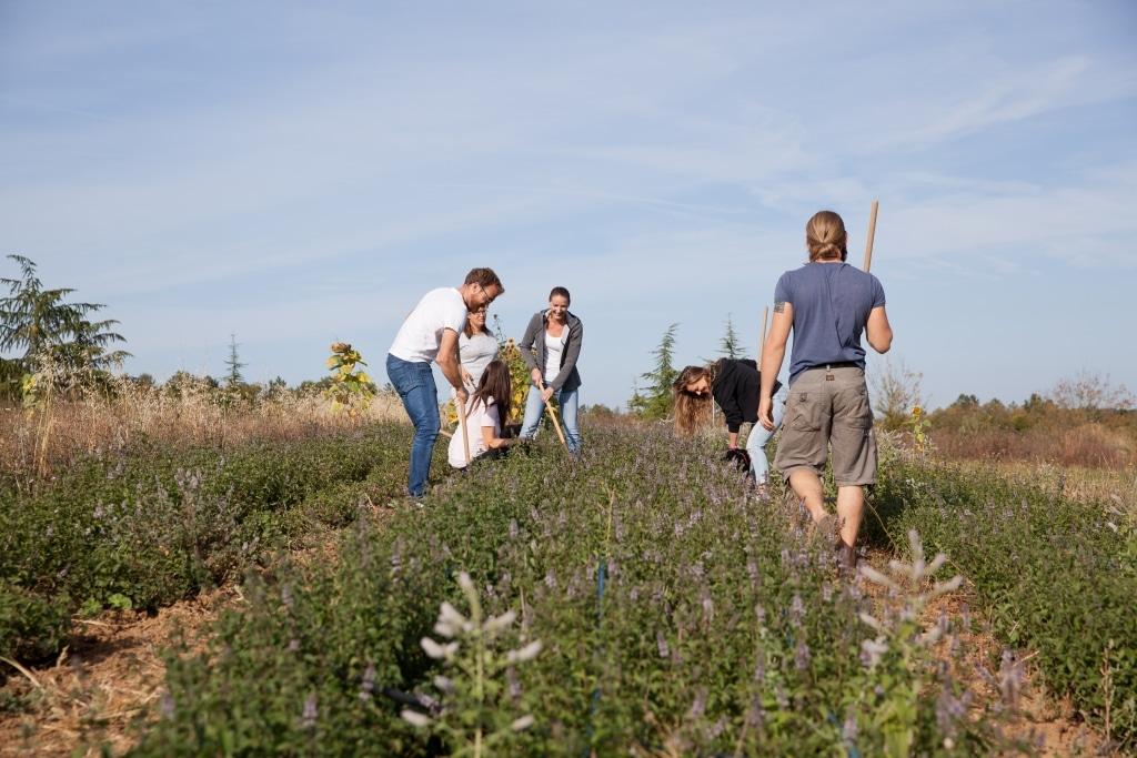 Team Tante Fine bei der Feldarbeit