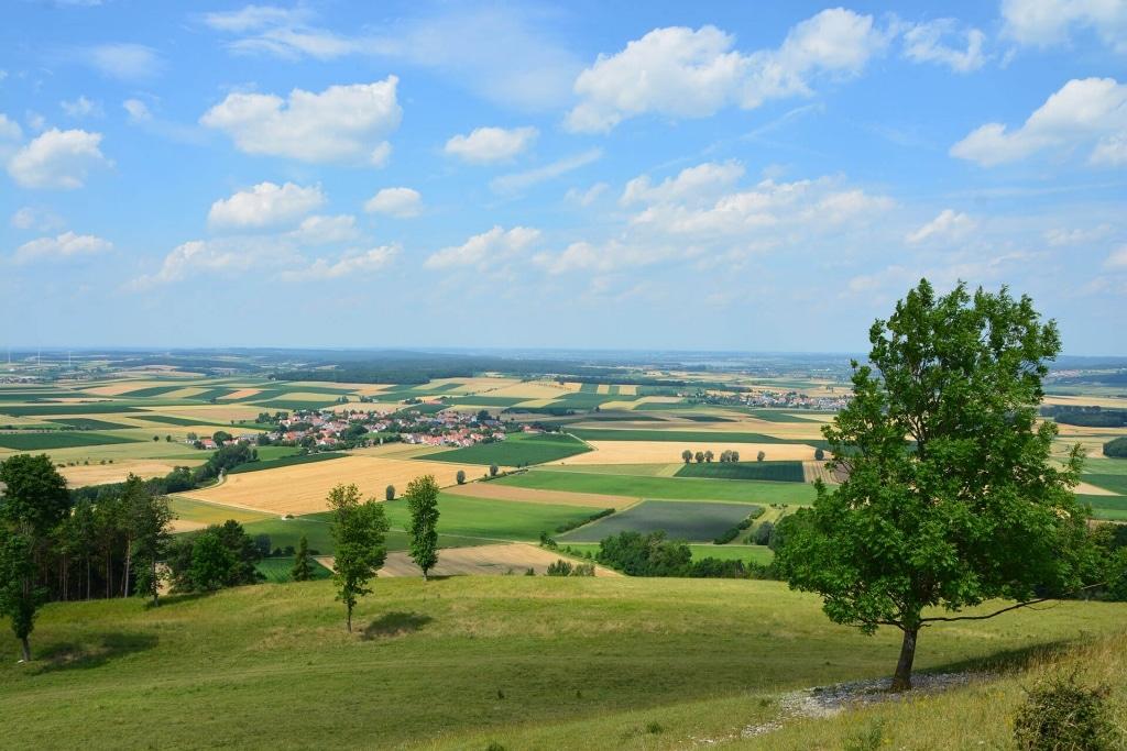 Landschaft mit Feldern rund um die Gelbe Bürg