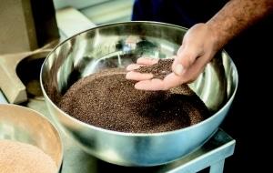 Schale mit Samen von dazu