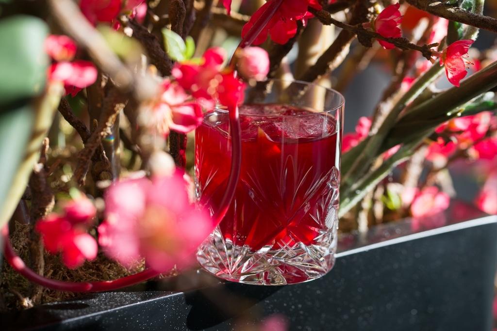 Herber Hibiskus von Dr. Jaglas im Glas mit Blumendeko