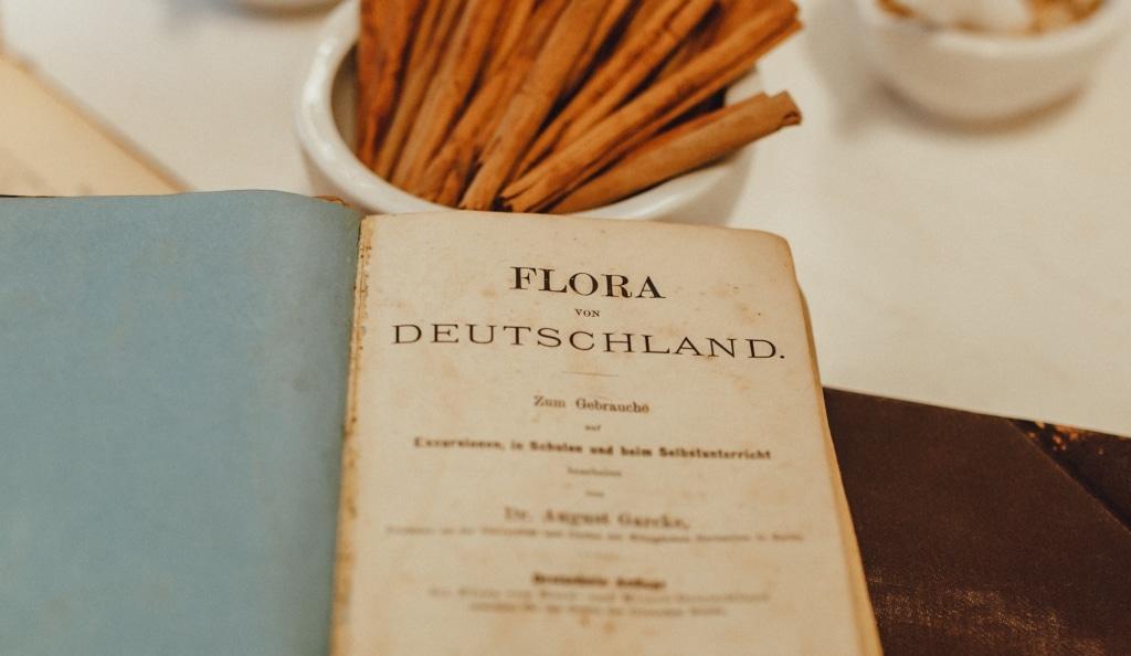 Altes Apotheker Kompendium von Dr. Jaglas
