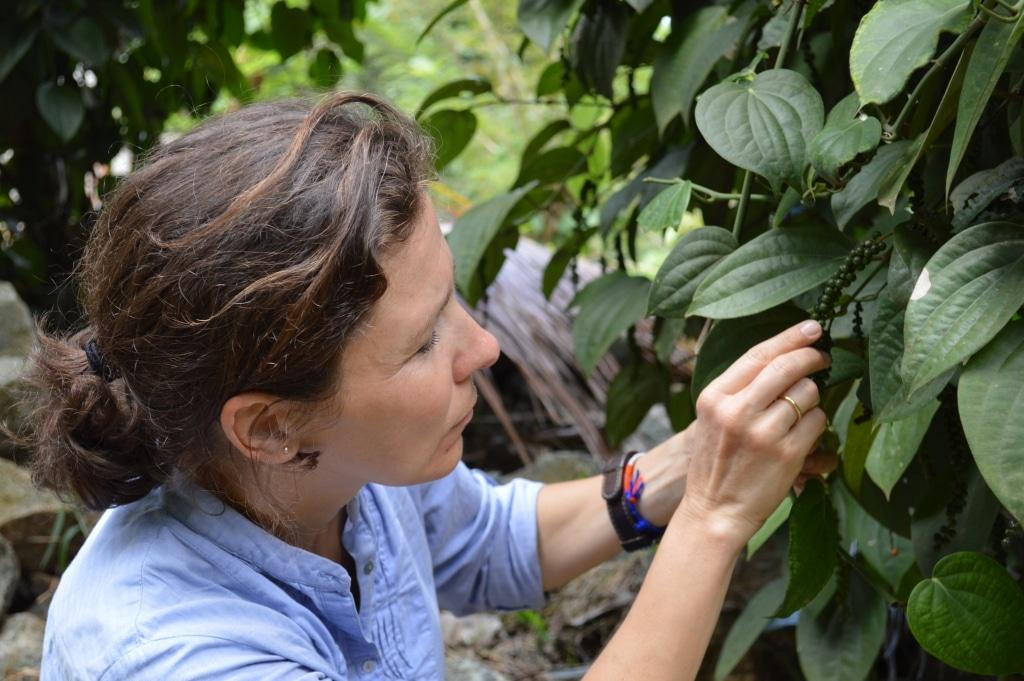 Anja Matthes von Pure Pepper bei der Ernte